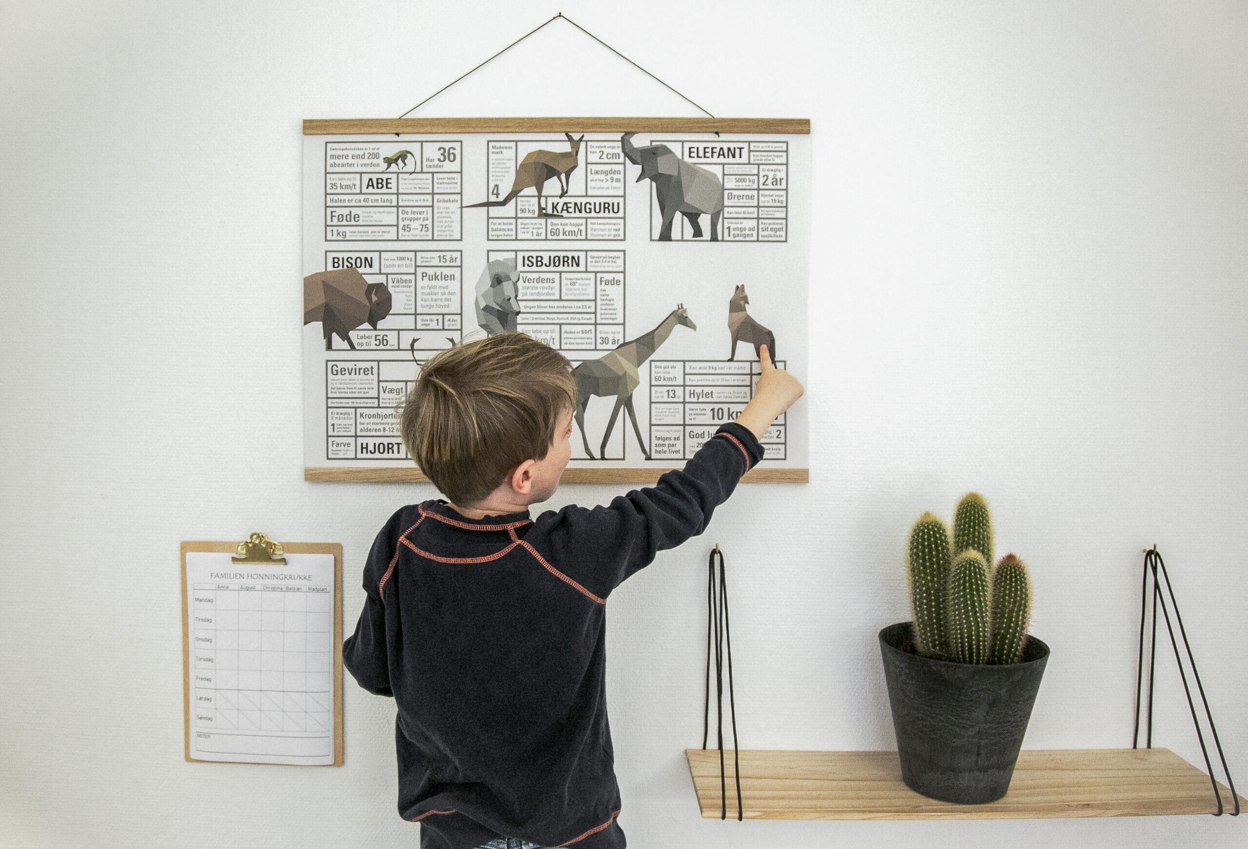 verdensplakat, verdenskort, verden med dyr