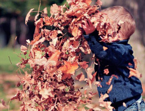 Efterårsferie – Hvad skal vi lave?